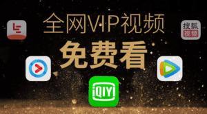 送福利之全网VIP视频免费看|鸟叔の窝